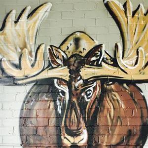 Miss Moose Tuck Shop Cafe