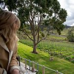 Mt Lofty Ranges Vineyard