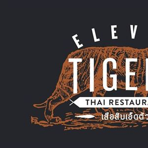 Eleven Tigers