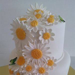 Creative Cakes By Deborah Feltham
