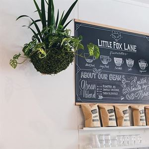 Little Fox Lane