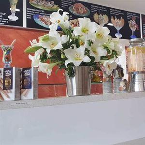 Ice Cafe Venezia
