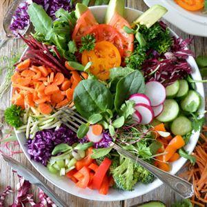 Nutrition Capital