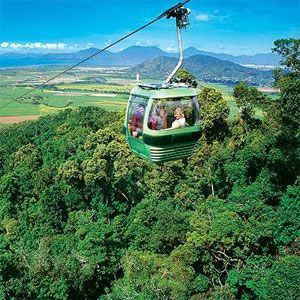 Skyrail - Rainforest Cableway