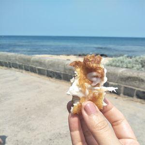 Brighton Seafoods