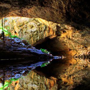 tunnel creek national park derby attractions reviews