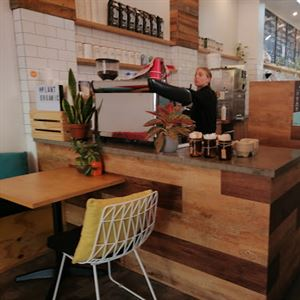 The Plant Organic Cafe & Market