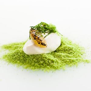 Green Pea, Yoghurt, Lime and Mint