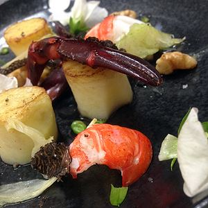 Marron with a vanilla oil, fennel, walnut and kipfler forest salad with shaved truffle - Chef Recipe by Shawn Sheather