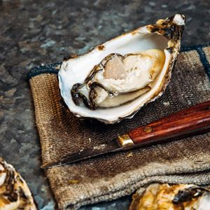 Oysters, Pickled Kohlrabi, Apple and Sea Lettuce - Chef Recipe by Lennox Hastie