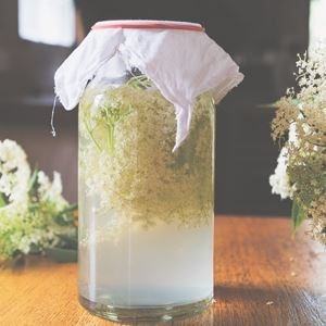 Wild Fermented Elderflower Soda - by Kirsten Bradley and Nick Ritar
