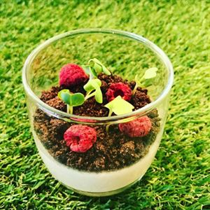 Vanilla Panna Cotta with Chocolate Soil - Chef Recipe Simon Capewell