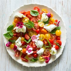 Flower, Basil, Tomato and Buffalo Mozzarella Salad