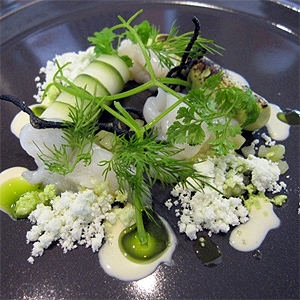 Hervey Bay Scallops, Cucumber, Yoghurt, Avocado and  Ink Cracker
